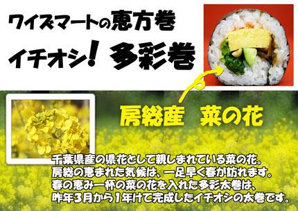 多彩巻菜の花.jpg