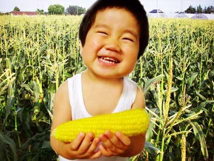 corn08.jpg